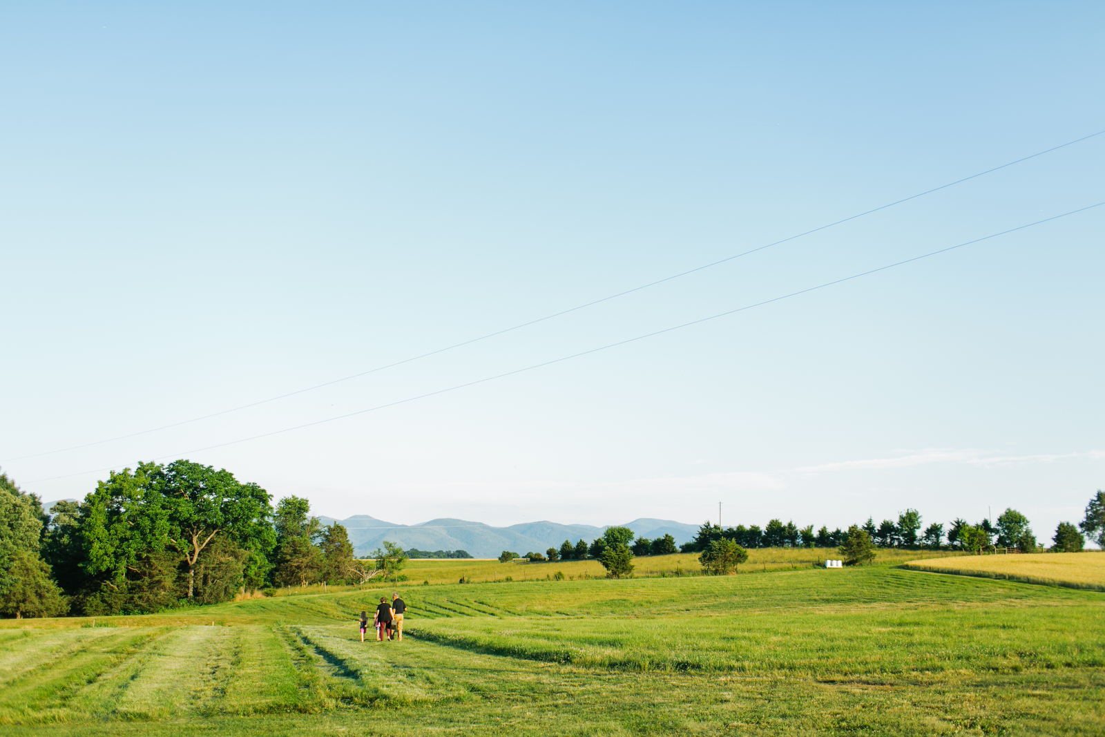 Photograph of the backs of a family as they walk into the distance in the middle of a pasture